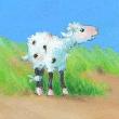 Joschi wird zurückgelassne von der Herde